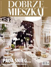 """Projekt wnętrza. . Artykuł """"Doradzamy i inspirujemy"""" w miesięczniku Dobrze Mieszkaj 1/2011"""